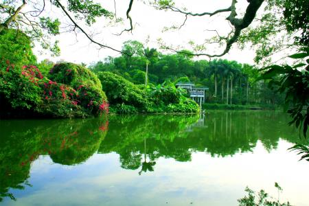 四川南国绿野仙踪美景