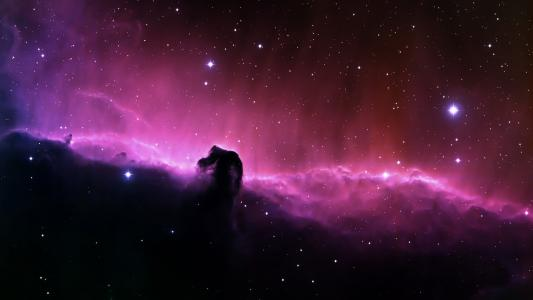 以马头形状的星云