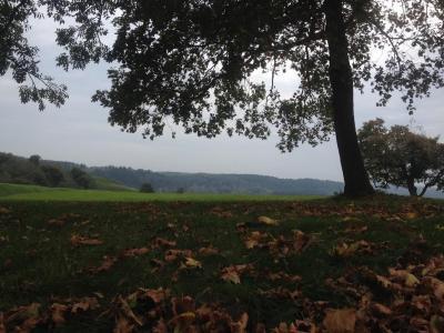 秋天在Kernave,立陶宛