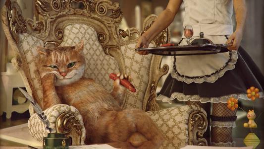 科特贵族在一个富有的房子