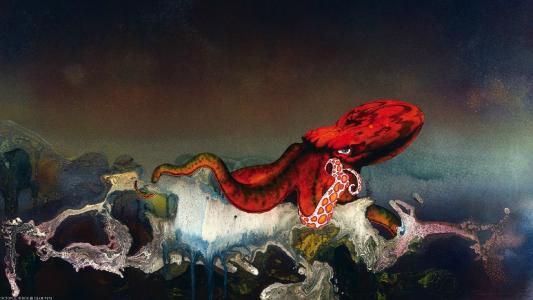 海洋之王红色章鱼