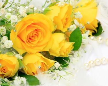 与白花的黄色玫瑰