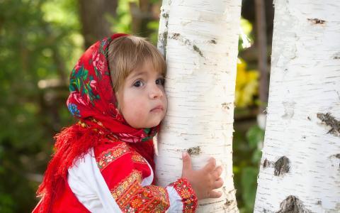 在桦树的女孩