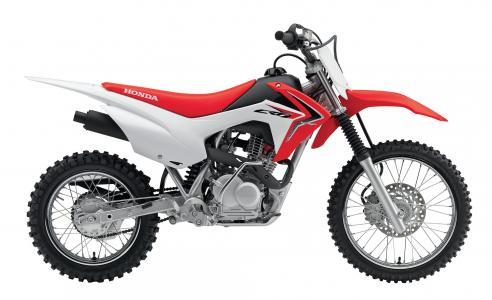 受欢迎的摩托车Honda CRF 110 F