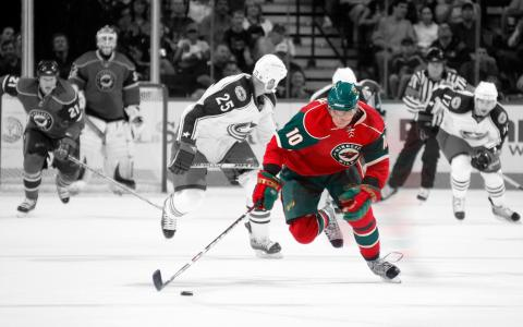 玛丽安Gaborik NHL