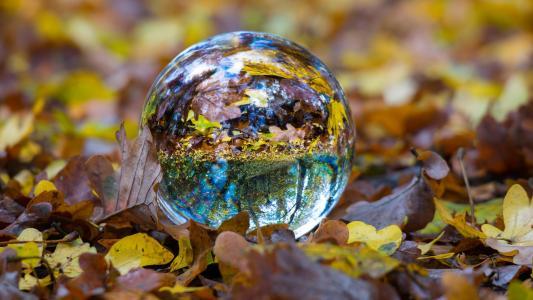 秋天,一个玻璃碗躺在干燥的黄色草地上