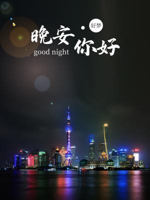 晚安你好上海城市夜景