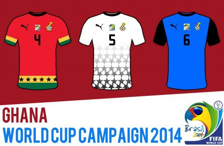 2014年巴西世界杯加纳国家队的形式