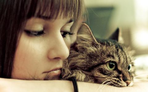 一个女孩正坐着她的猫
