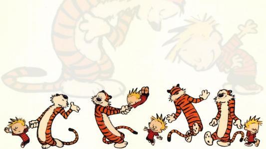 一个男孩在漫画书开尔文和霍布斯玩老虎