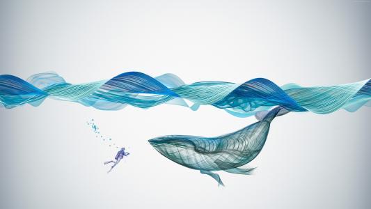 大鲸鱼和潜水员在水下3d图形