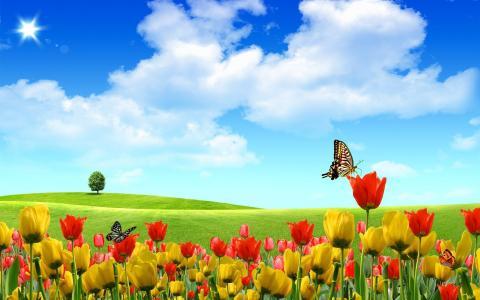 在郁金香的抽象蝴蝶