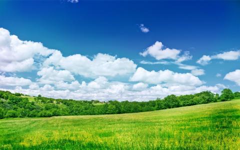 美丽的大自然