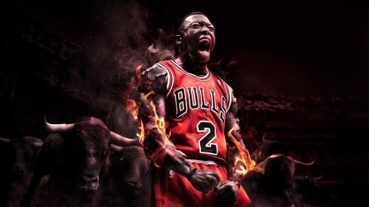 芝加哥公牛队的篮球运动员内特·罗宾逊球员