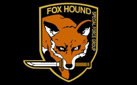 与狐狸形象的军事雪佛龙