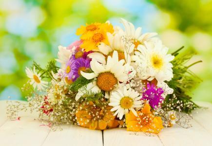 非洲菊的花束