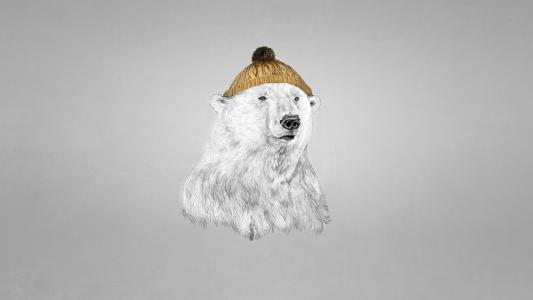 北极熊在一顶帽子
