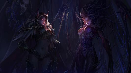 暗夜精灵,星际争霸,魔兽世界,星际争霸,星际争霸