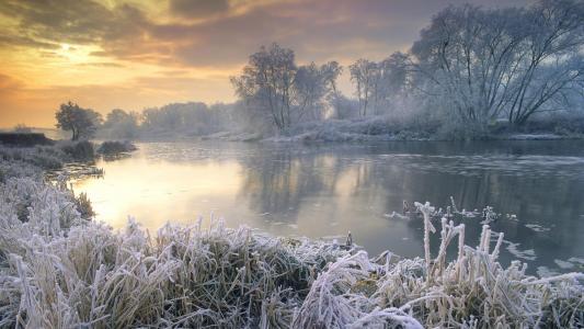 河岸上的植物覆盖着白霜