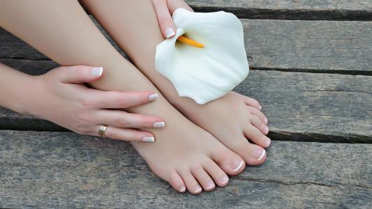 一个女孩和一朵花的腿
