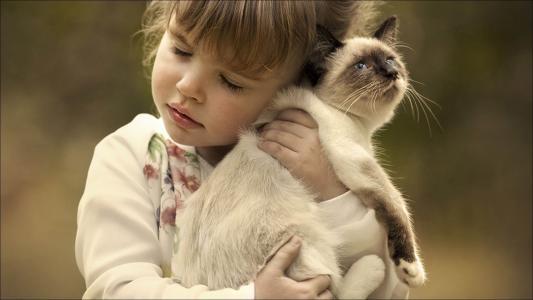 抱着一只小猫的小女孩