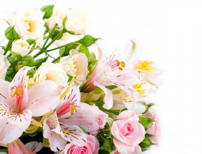 桃红色和白色玫瑰和alstromeria花束在白色背景开花