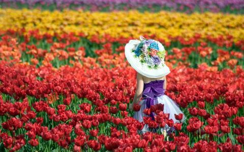 红色郁金香中戴着帽子的女孩