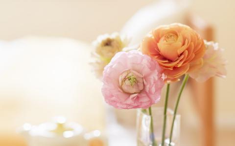 在花瓶里的精致小花