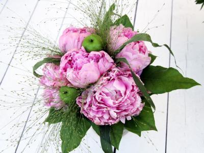 美丽的牡丹花朵