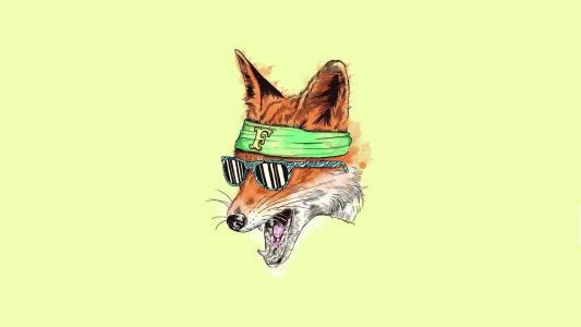 在黄色背景上的狐狸