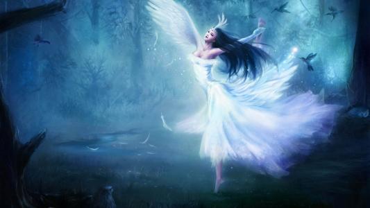 在森林里的白色天使