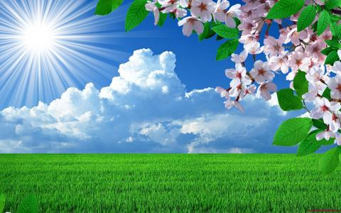 晴朗的天气在春天在外地