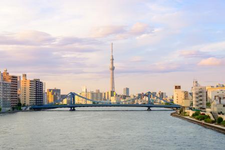 日本的背景下,东京市的全景