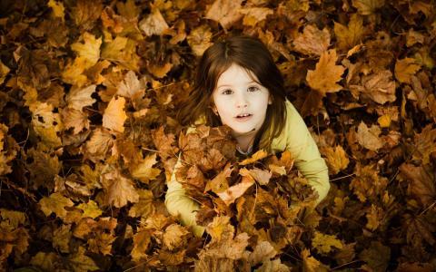 那女孩钻进了落叶