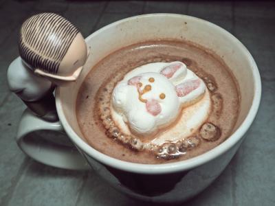 与棉花糖野兔热可可