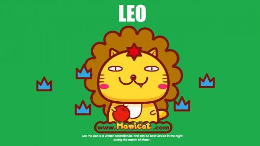 哈咪猫狮子座