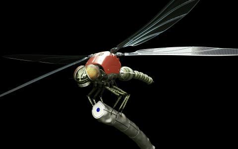 铁秆上的蜻蜓机器人