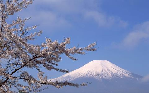 富士山白峰