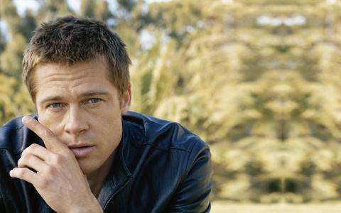 演员布拉德·皮特(Brad Pitt)