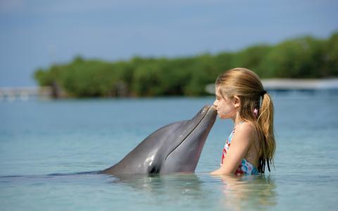 一个女孩吻了一只海豚