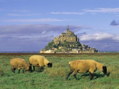 巨大的法国城堡