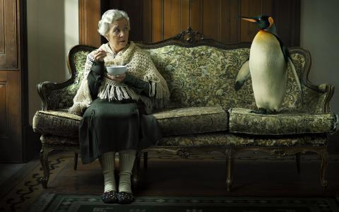 老太太和企鹅