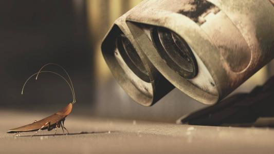 机器人看着蟑螂,卡通