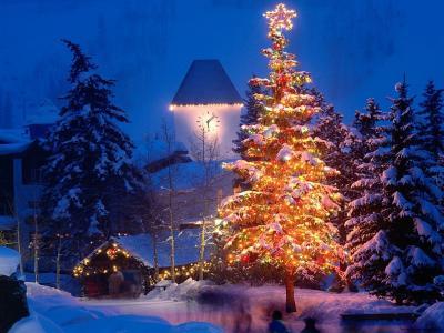 智能圣诞树新年2014年马年