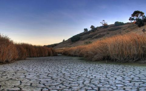 干燥的河床