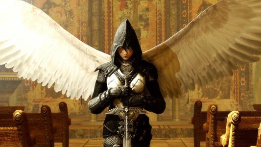 用剑装甲的天使