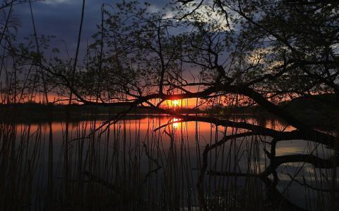 日落在一个安静的湖面上