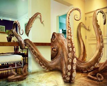 在房间里的巨型章鱼