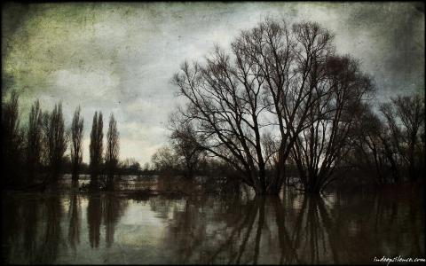 图片河的春天洪水
