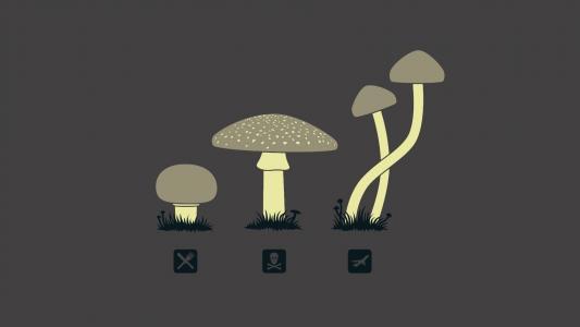 不同的真菌的目的